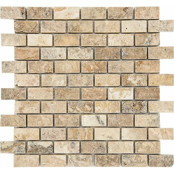 Scabos Tumbled 1 x 2 Stone Mosaic Tile by Parvatile