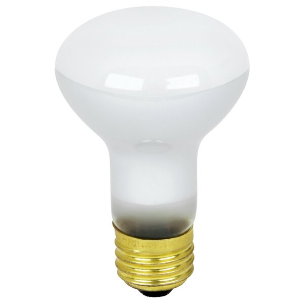 45W 130-Volt Light Bulb (Set of 12) by FeitElectric
