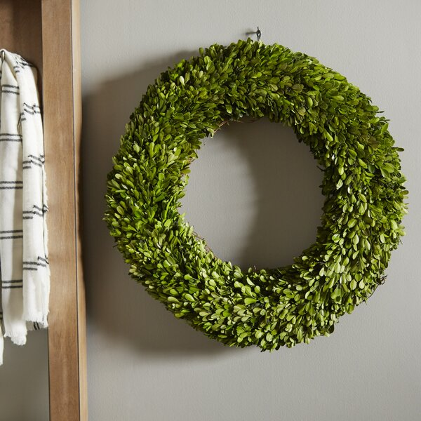 Preserved Boxwoods Preserved Wreath by Laurel Foundry Modern Farmhouse
