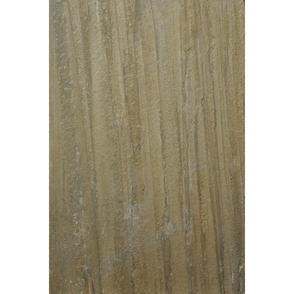 Century 16 x 24 Natural Stone Wood Look/Field Tile in Beige by The Bella Collection