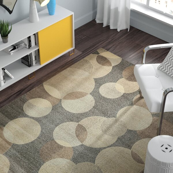 Chenango Rectangle Gray Area Rug by Zipcode Design