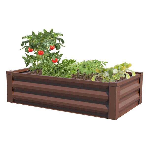 Godlewski 4 ft x 2 ft Metal Raised Garden by August Grove