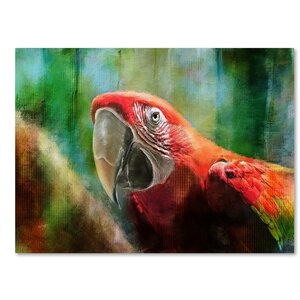 'Green Winged Macaw' by Lois Bryan Painting Print on Wrapped Canvas by Trademark Fine Art