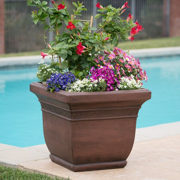 Kendig Fiberglass Pot Planter by Charlton Home