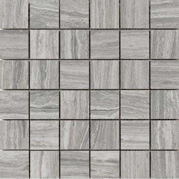 Terrane 2 x 2 Porcelain Mosaic Tile in Gray by Emser Tile