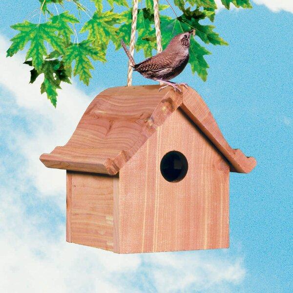 Wren Wild 6.5 in x 7.5 in x 6.5 in Birdhouse by Perky Pet