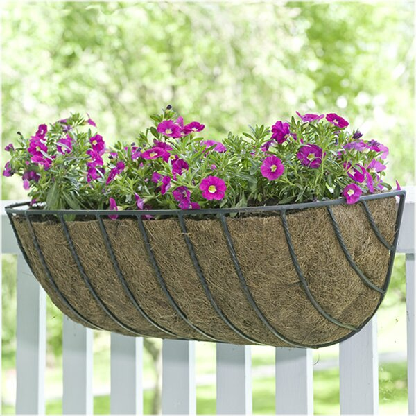 Canterbury Horse Trough Steel Rail Planter by CobraCo