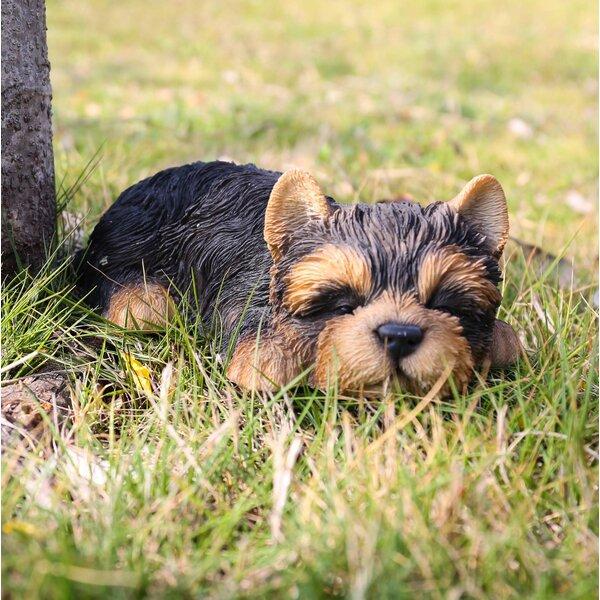 Fernon Yorkshire Terrier Puppy Sleeping Statue by Red Barrel Studio