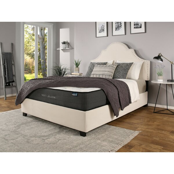 Stepanie Upholstered Standard Bed with Mattress by Darby Home Co