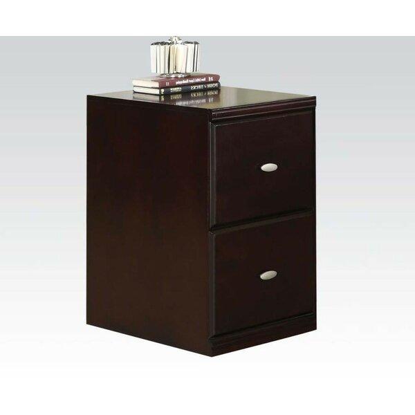 Davalos 2-Drawer Vertical Filing Cabinet