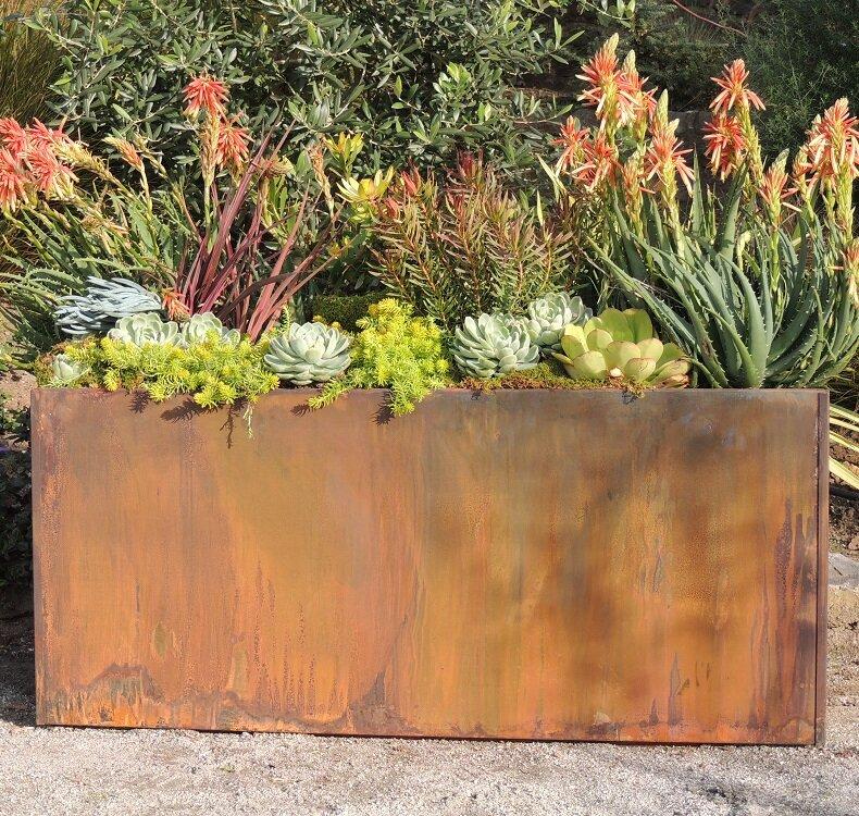 Elisabetta Corten Steel Planter Box Reviews Birch Lane