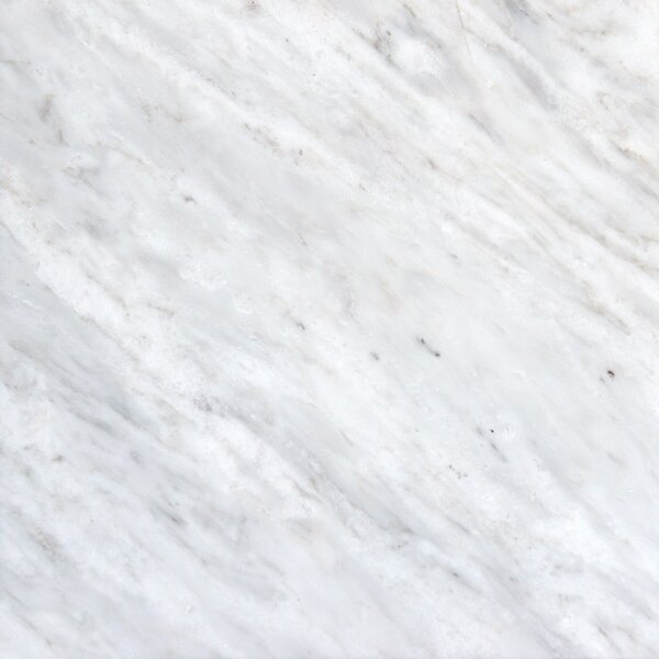 12'' x 12'' Marble Field Tile in Arabescato Carrara by MSI