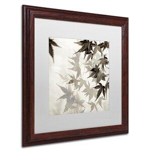'Florison LVII' Framed Photographic Print by Trademark Fine Art