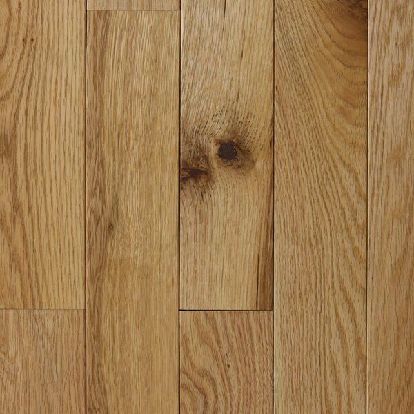 Varnazza 2-1/4 Solid Oak Hardwood Flooring in Natural by Branton Flooring Collection