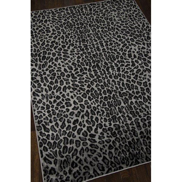 Colletta Charcoal Area Rug by Willa Arlo Interiors