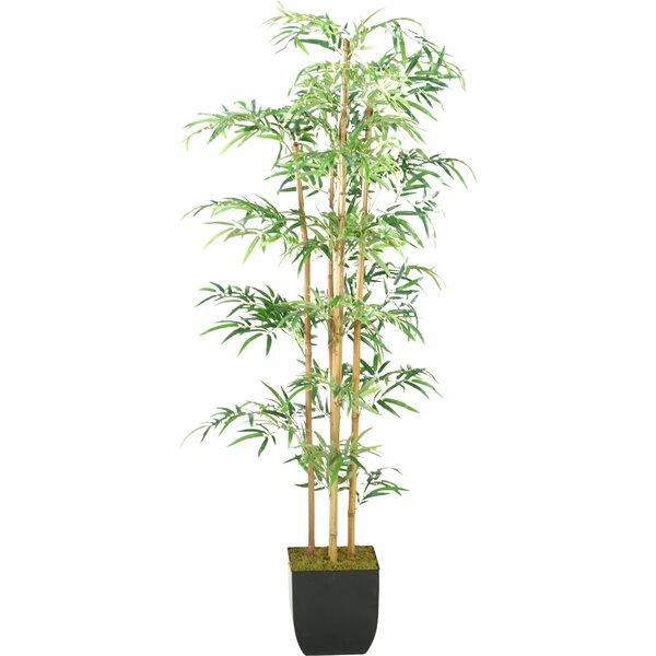 Mini Bamboo Tree in Planter by D & W Silks