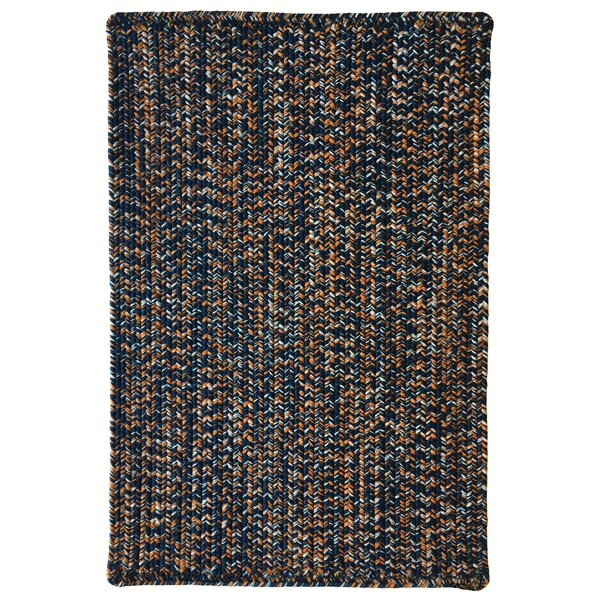 One-of-a-Kind Aukerman Hand-Braided Navy Indoor/Outdoor Area Rug by Isabelline