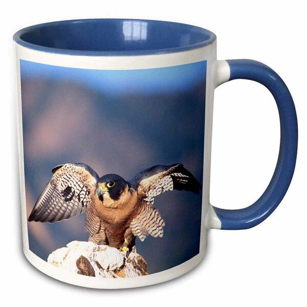East Urban Home Peregrine Falcon Bird Native To Us Coffee Mug Wayfair