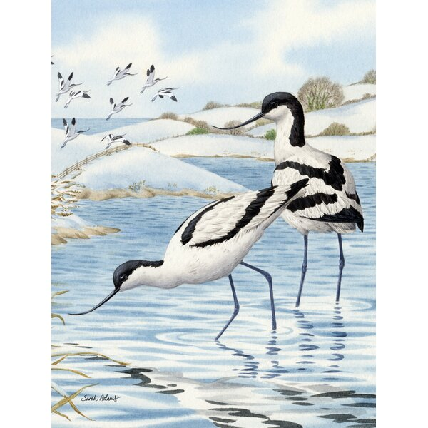 Avocets Vertical Flag by Caroline's Treasures
