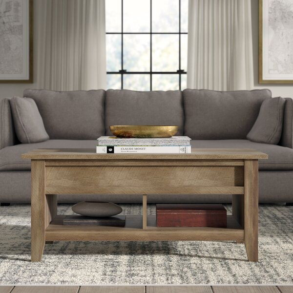 Riddleville Lift Top Coffee Table with Storage by Greyleigh