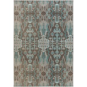 Hasselt Teal/Brown Area Rug