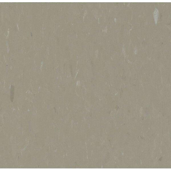 Alternatives 12 x 12 x 160mm Luxury Vinyl Tile in Latte by Congoleum