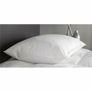 Down and Feather Pillow ByAlwyn Home