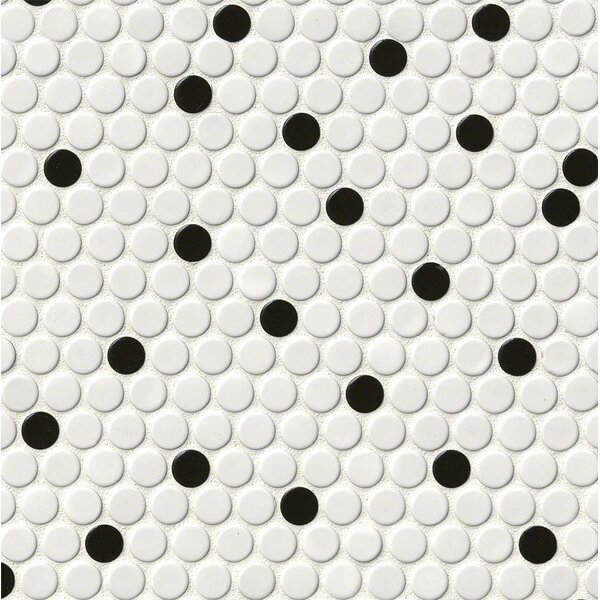 Penny Round Porcelain Mosaic Tile in White/Black by MSI