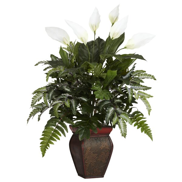 Mixed Greens Desk Top Plant in Decorative Vase by Nearly Natural