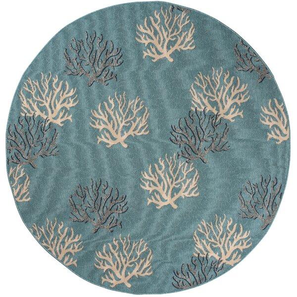 Holl Blue Indoor/Outdoor Area Rug