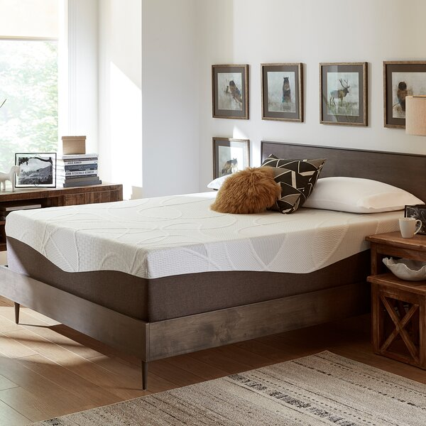14 Firm Gel Memory Foam Mattress by Alwyn Home