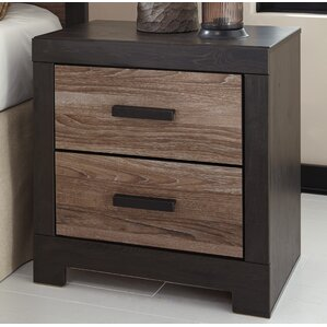 Arjun 2 Drawer Nightstand by Mercury Row