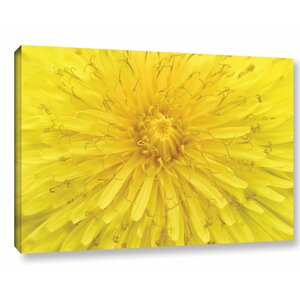Yellow Dandelion Photographic Print on Wrapped Canvas by Latitude Run