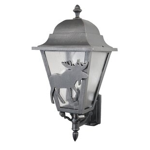 Reviews Penfield 3-Light Outdoor Sconce By Alcott Hill