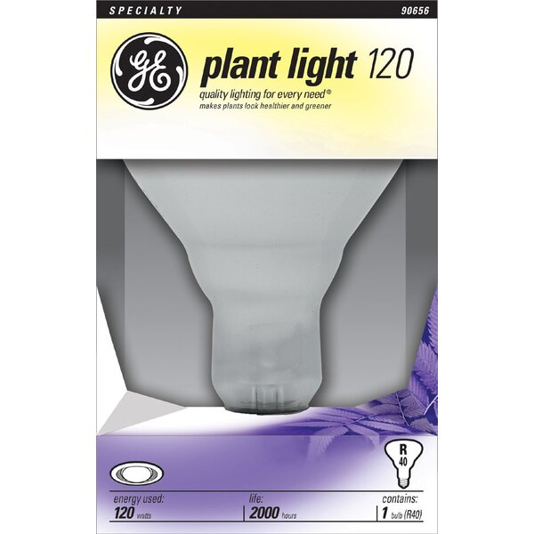 Frosted E26/Medium Light Bulb by GE
