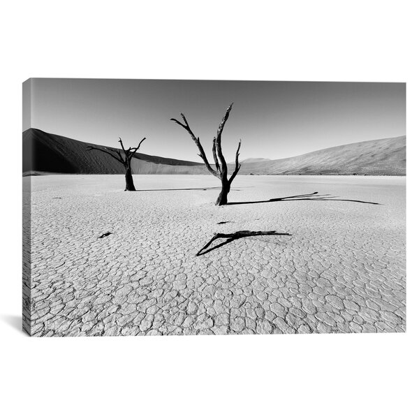 Namibia Dead Vlei by Nina Papiorek Photographic Print on Wrapped Canvas by iCanvas