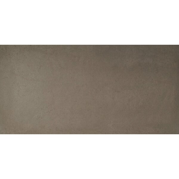 Capella 12 x 24 Porcelain Field Tile in Sand by MSI