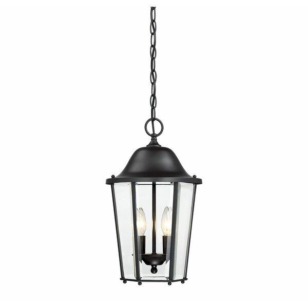 Raritan 2-Light Outdoor Hanging Lantern by Charlton Home