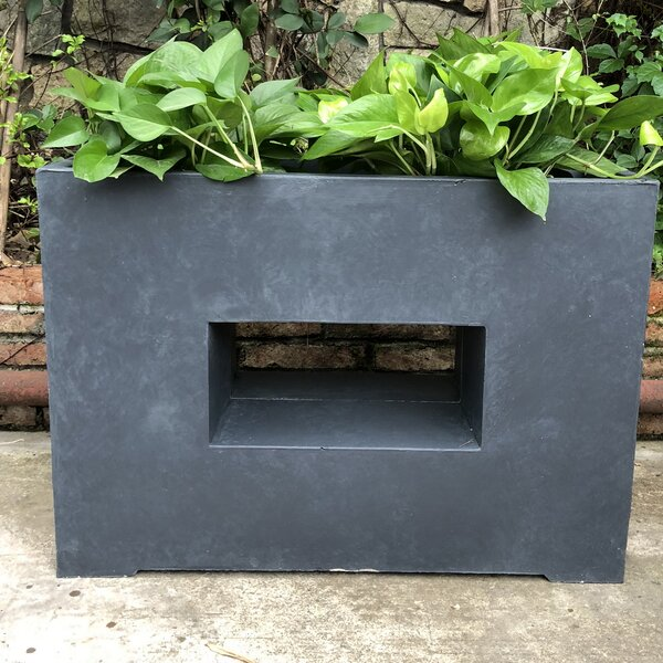 German Rectangular Platform Planter Box by Williston Forge