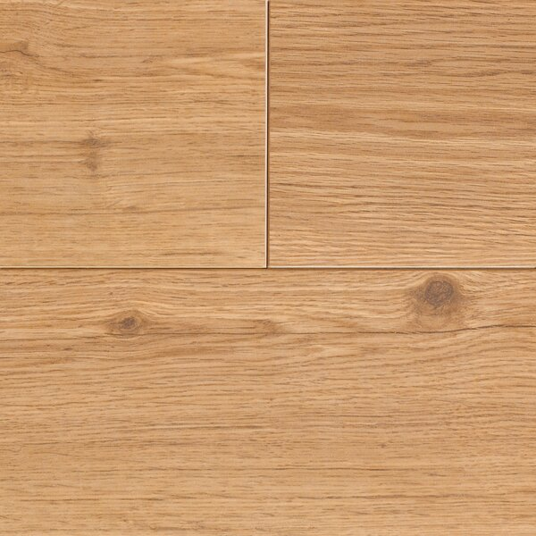 Revolutions 5'' x 51'' x 8mm Oak Laminate Flooring in Honeytone by Mannington