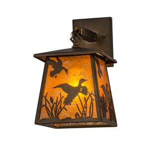 Reviews 1-Light Outdoor Wall Lantern By Meyda Tiffany