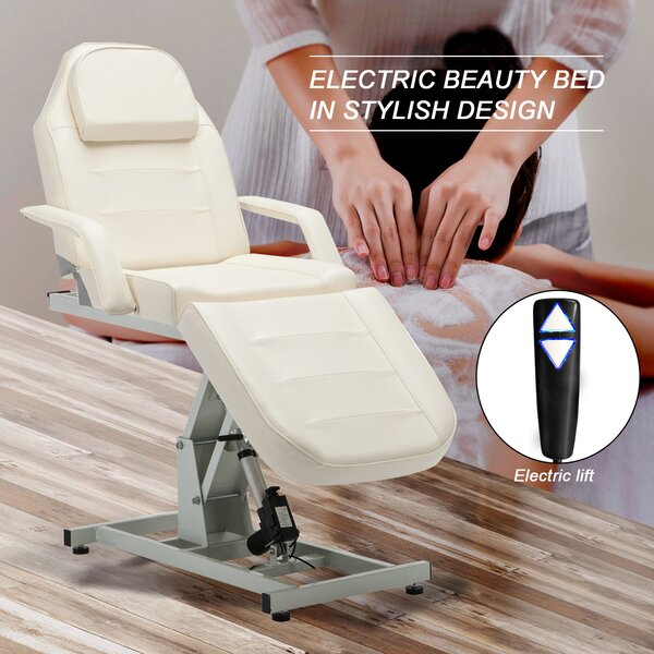 Electric Spa Salon Facial Reclining Massage Chair By Symple Stuff