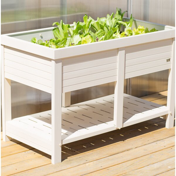 Elevated Planter by New Age Garden