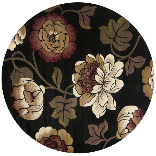 Eve Black Bella Rug by Ebern Designs