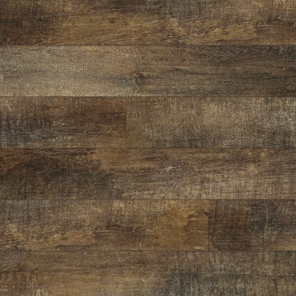 Restoration 6'' x 51'' x 12mm Laminate Flooring in Bark by Mannington