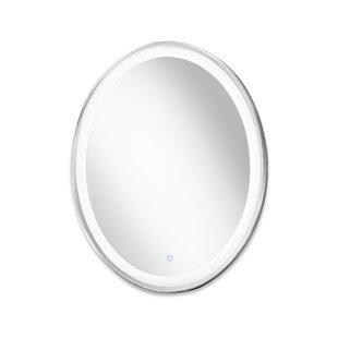 Orren Ellis Castanon Oval Accent Mirror