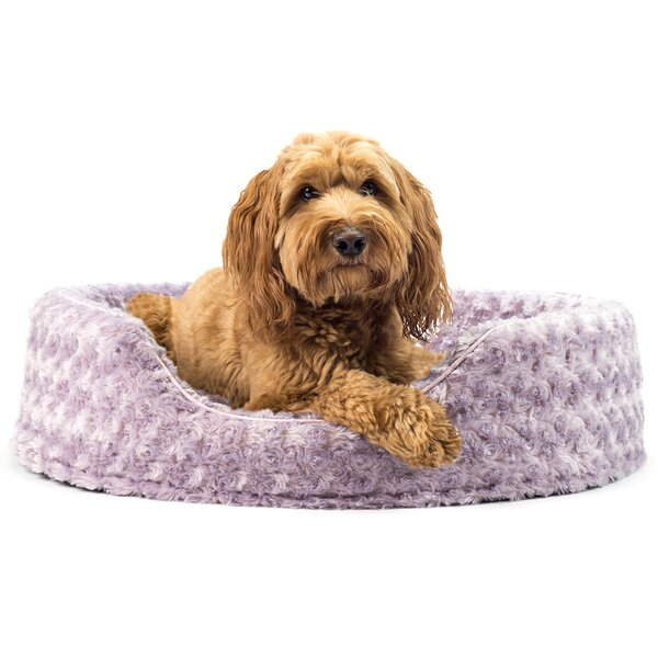 Ernie Ultra Plush Oval Pet Bed with Removable Cover by Archie & Oscar