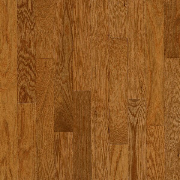 Manchester 2.25 Solid Red Oak Hardwood Flooring in Amber by Bruce Flooring
