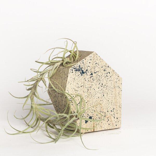 Maple Pot Planter by Boyce Studio