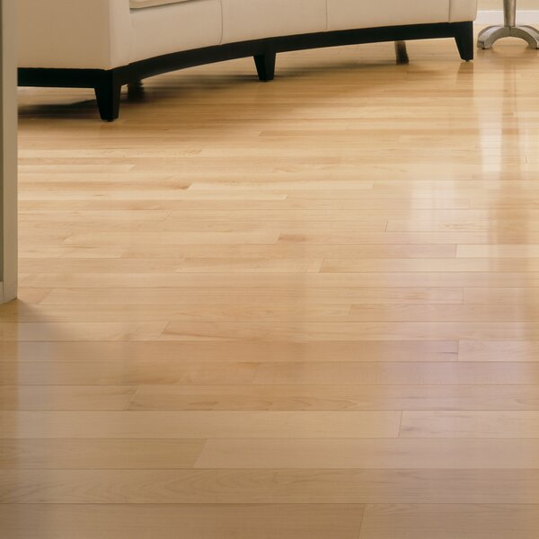 Speciality 2-1/4 Solid Maple Hardwood Flooring in Natural by Somerset Floors